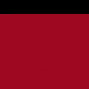 VETtrak Computer Icon