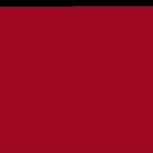 VETtrak Search Analytics Icon