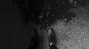Shoes and the plant Black and White
