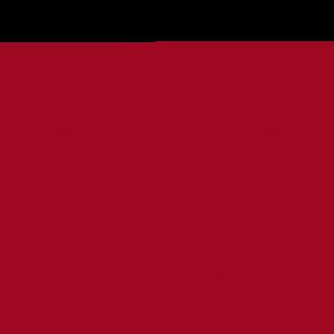 VETtrak Sync Icon